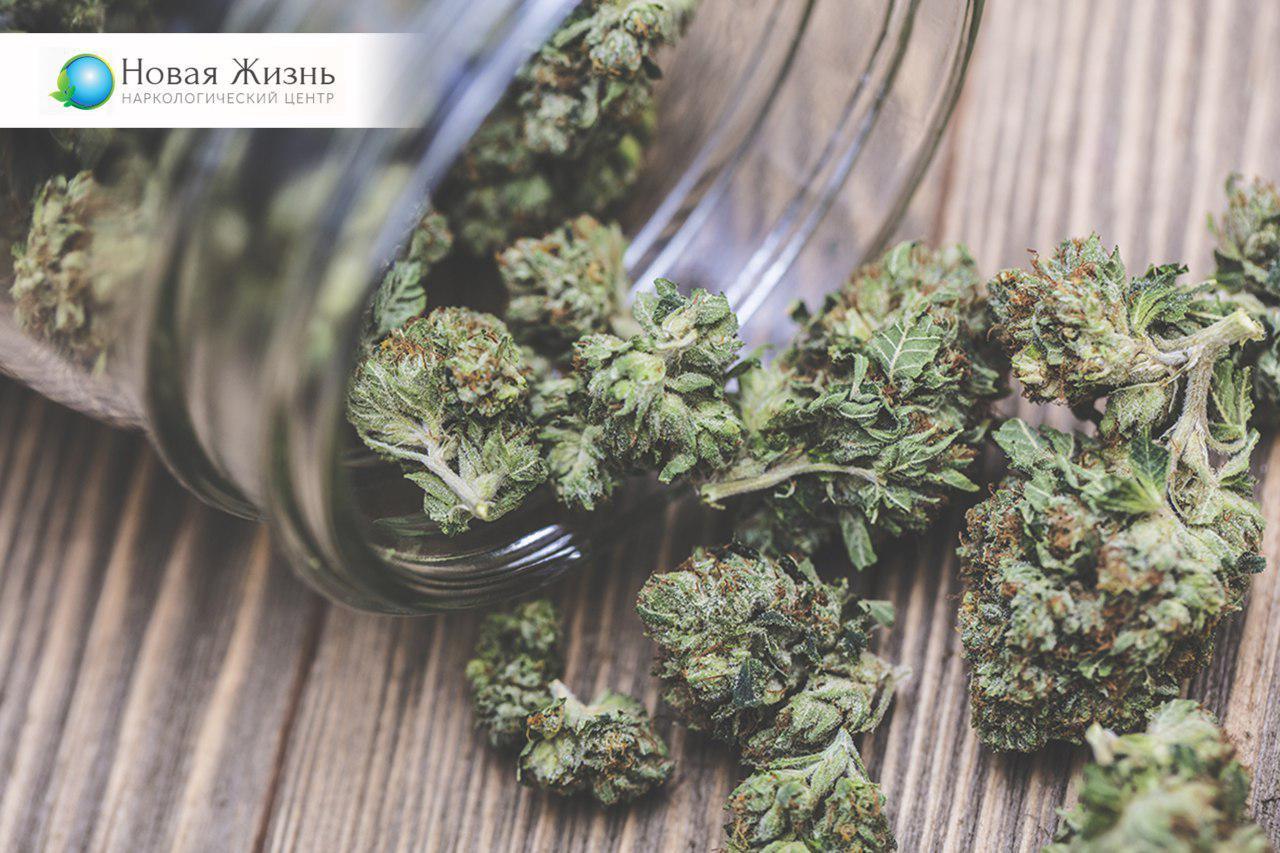 Как избавиться зависимости от марихуаны